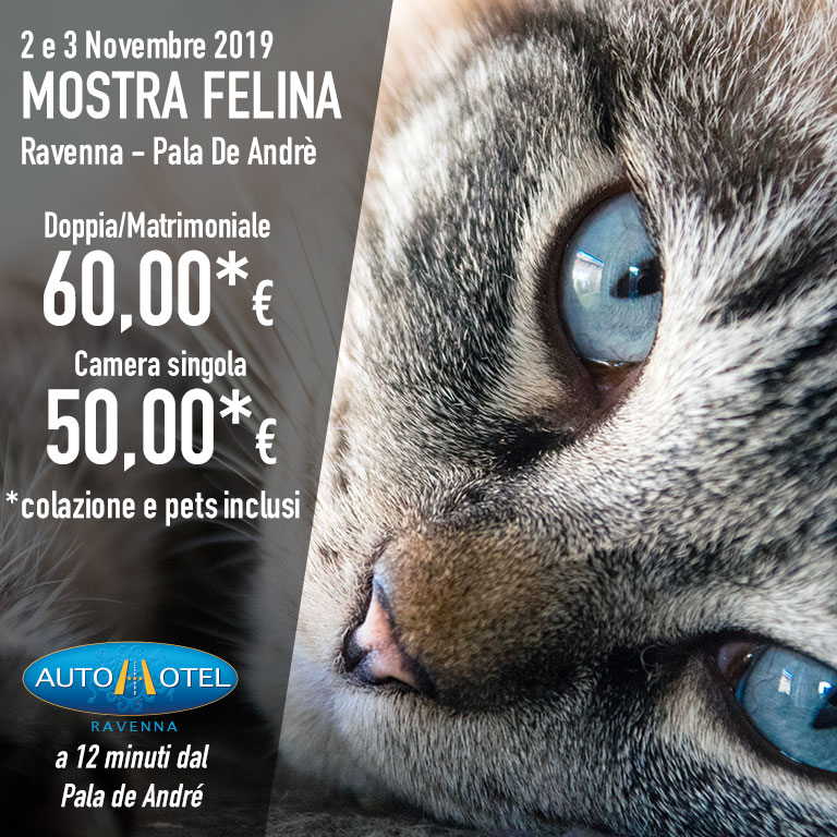 Autohotel Ravenna - Offerta per i partecipanti alla Mostra Felina