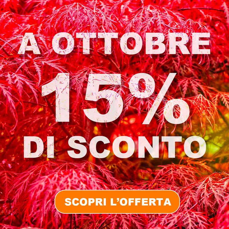 Autohotel Ravenna - Imperdibile promozione di ottobre